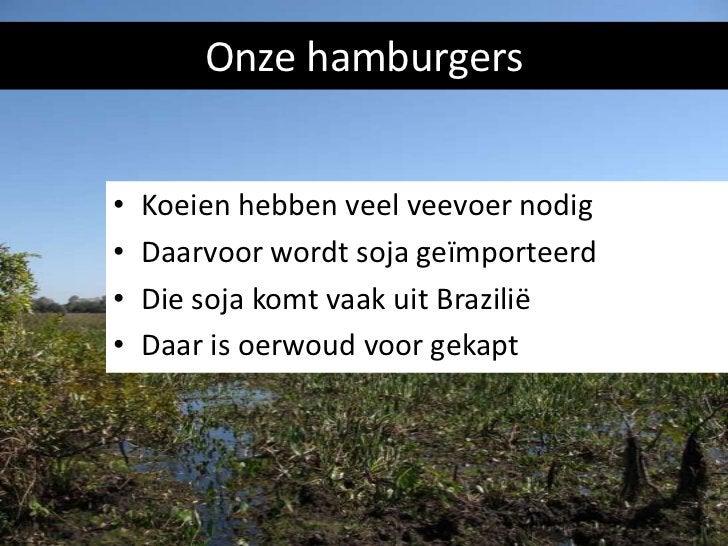Hoeveel regenwoud is er in 3 jaar verdwenen voor soja?       3 keer Leidschendam - Voorburg       2 keer Nederland       D...