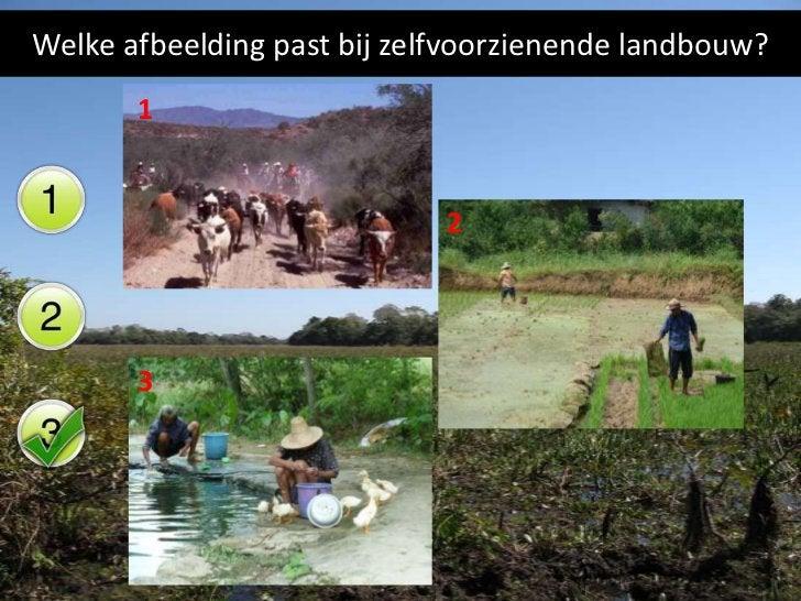 Welke afbeelding past bij commerciële landbouw?      1                          2      3