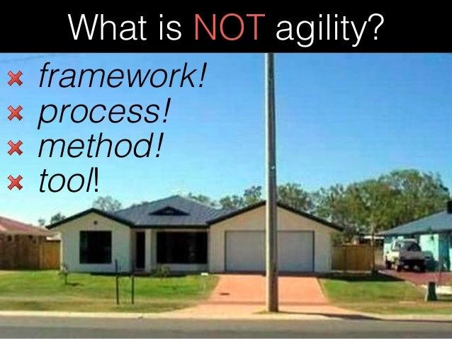 Scaling and Sustaining Agility Slide 3