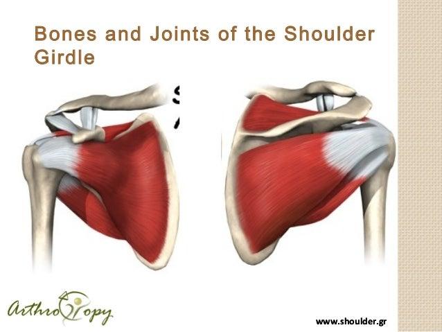 New developments in shoulder arthroscopy Slide 2