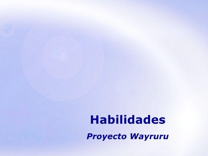 Habilidades Proyecto Wayruru