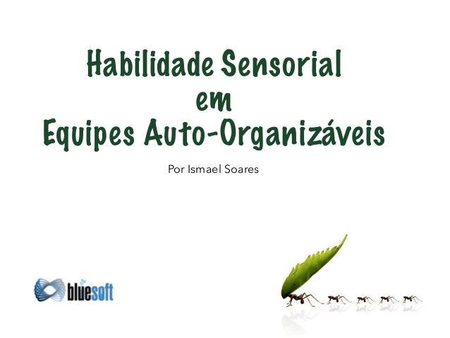 Habilidade Sensorial  em  Equipes Auto-Organizáveis  Por Ismael Soares