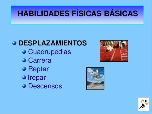HABILIDADESFÍSICASBÁSICAS DESPLAZAMIENTOS Cuadrupedias Carrera Reptar Trepar Descensos