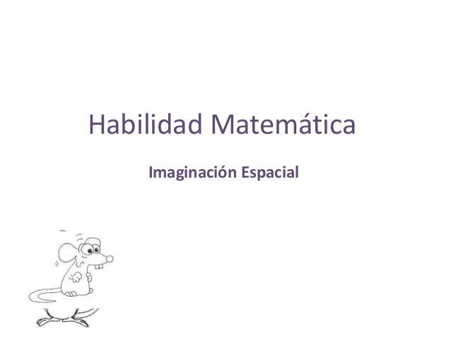 Habilidad Matemática    Imaginación Espacial