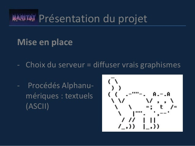 Présentation du projet Mise en place - Choix du serveur = diffuser vrais graphismes - Procédés Alphanu- mériques : textuel...