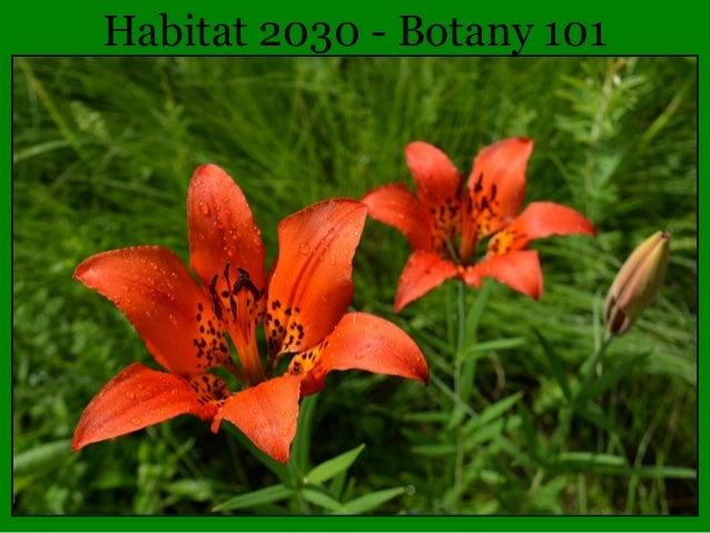 Habitat 2030 - Botany 101