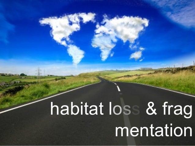 habitat loss & frag mentation
