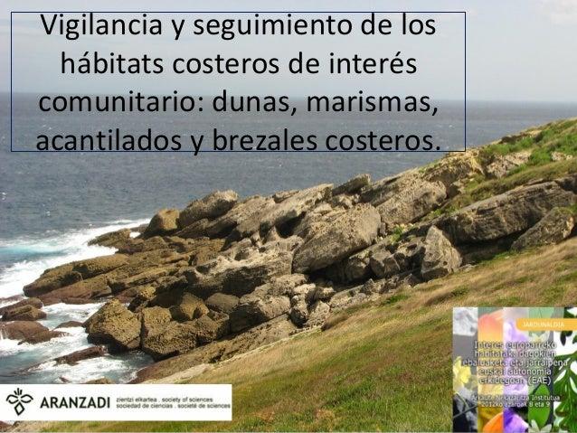 Vigilancia y seguimiento de los  hábitats costeros de interéscomunitario: dunas, marismas,acantilados y brezales costeros.