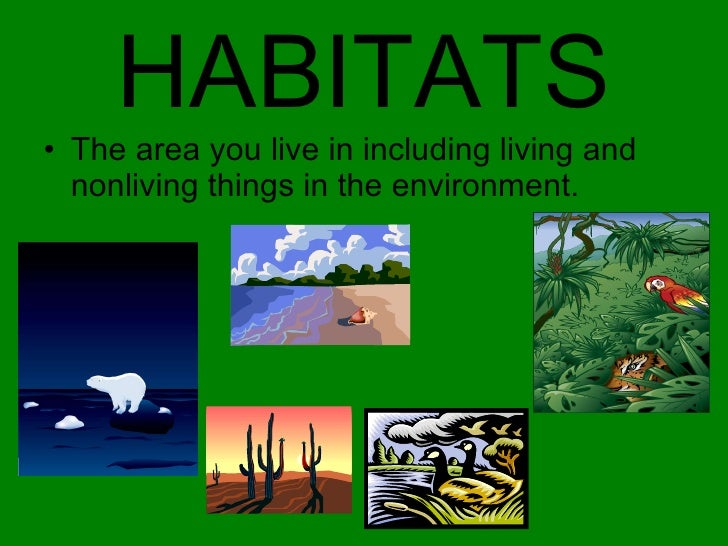 HABITATS <ul><li>The area you live in including living and nonliving things in the environment. </li></ul>
