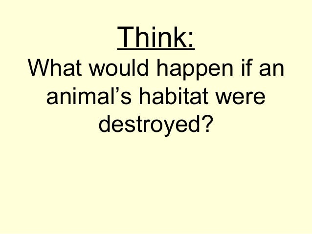 Think: What would happen if an animal's habitat were destroyed?