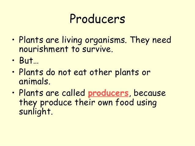 Producers • Plants are living organisms. They need nourishment to survive. • But… • Plants do not eat other plants or anim...
