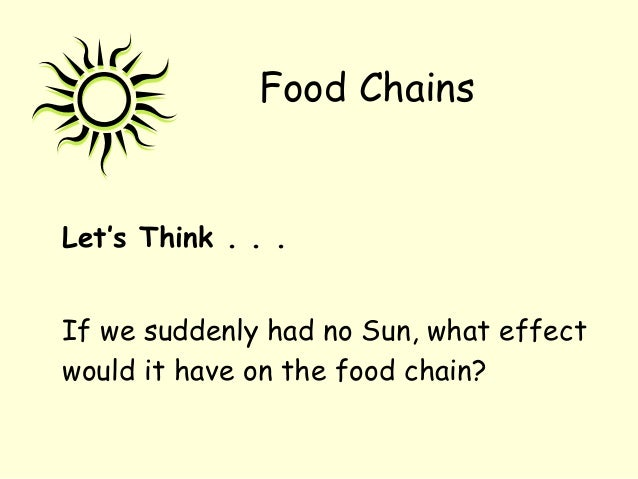 Let's Think . . . If we suddenly had no Sun, what effect would it have on the food chain? Food Chains