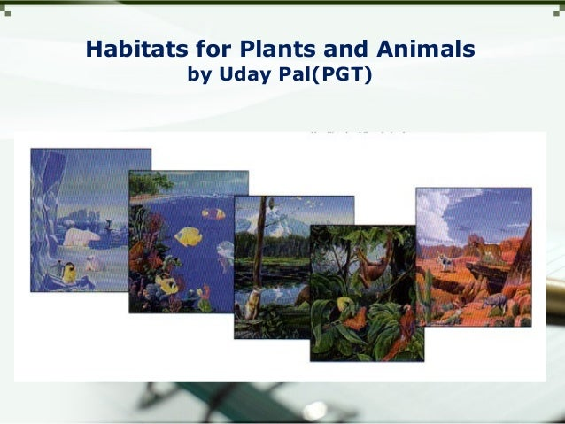 Habitats for Plants and Animals by Uday Pal(PGT)