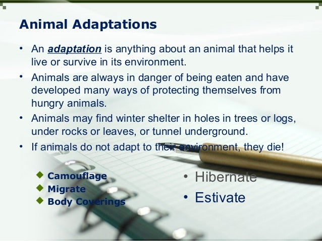 Animal Adaptations  Camouflage  Migrate  Body Coverings • Hibernate • Estivate • An adaptation is anything about an ani...