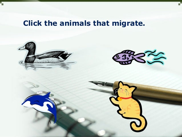 Click the animals that migrate.
