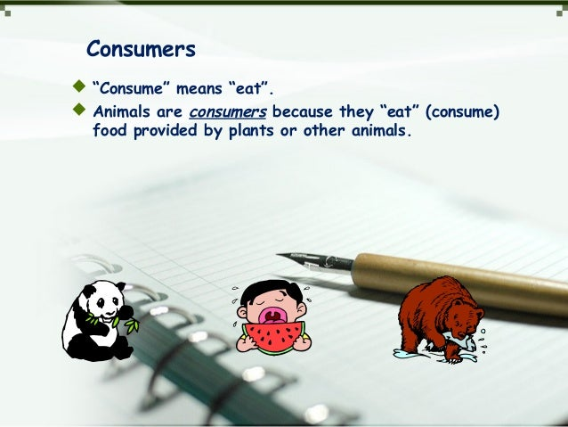 """Consumers  """"Consume"""" means """"eat"""".  Animals are consumers because they """"eat"""" (consume) food provided by plants or other a..."""
