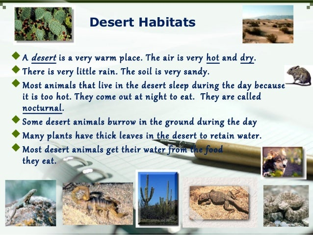 Desert Habitats A desert is a very warm place. The air is very hot and dry. There is very little rain. The soil is very ...
