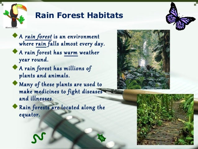 Rain Forest Habitats A rain forest is an environment where rain falls almost every day. A rain forest has warm weather y...