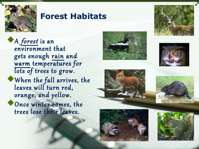Forest Habitats A forest is an environment that gets enough rain and warm temperatures for lots of trees to grow. When t...
