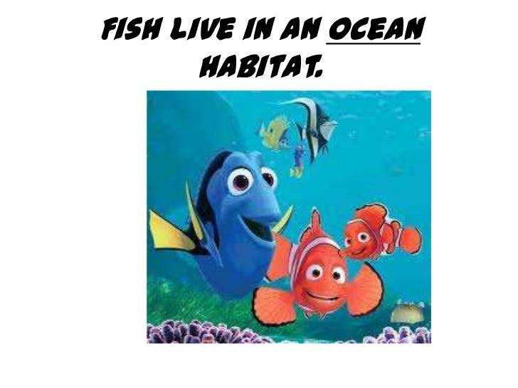 Fish live in an ocean       habitat.