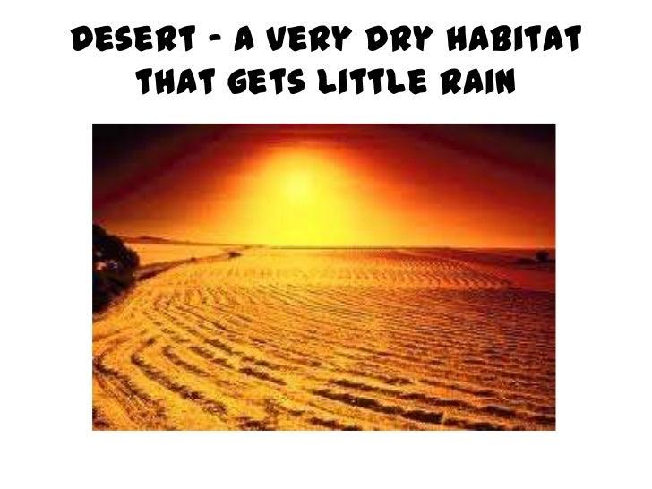 Desert – a very dry habitat   that gets little rain
