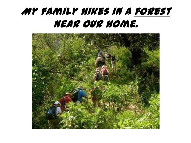 My family hikes in a forest     near our home.