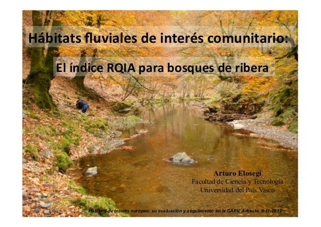 Hábitats fluviales de interés comunitario:      El índice RQIA para bosques de ribera              ...