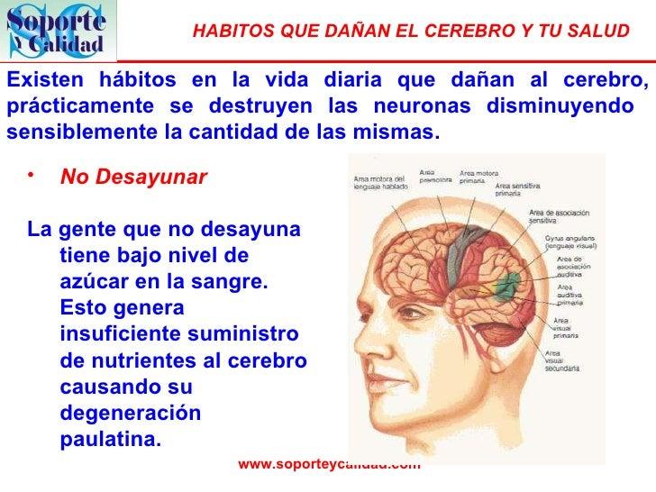 Existen hábitos en la vida diaria que dañan al cerebro, prácticamente se destruyen las neuronas disminuyendo  sensiblement...