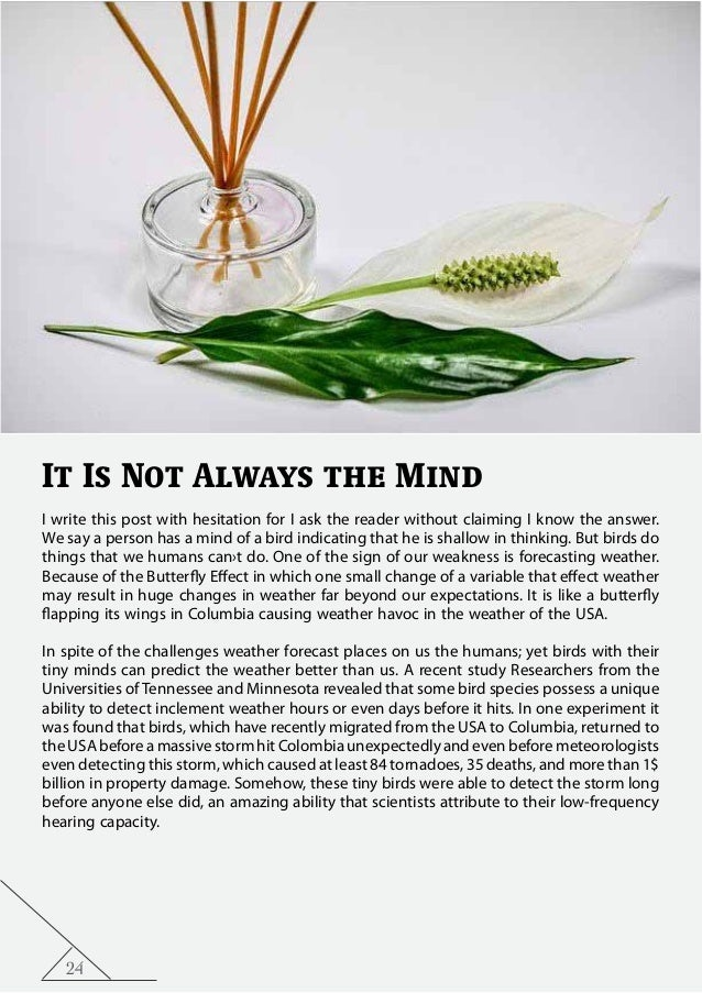 24 It Is Not Always the Mind I write this post with hesitation for I ask the reader without claiming I know the answer. We...
