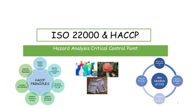 ISO 22000 & HACCP Hazard Analysis Critical Control Point HACCP PRINCIPLES Conduct a hazard Analysis Identify Critical Cont...