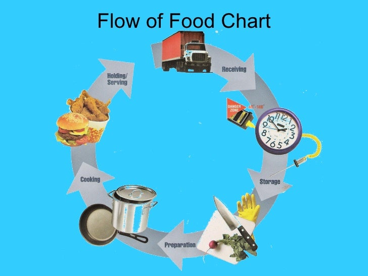 flow of food chart