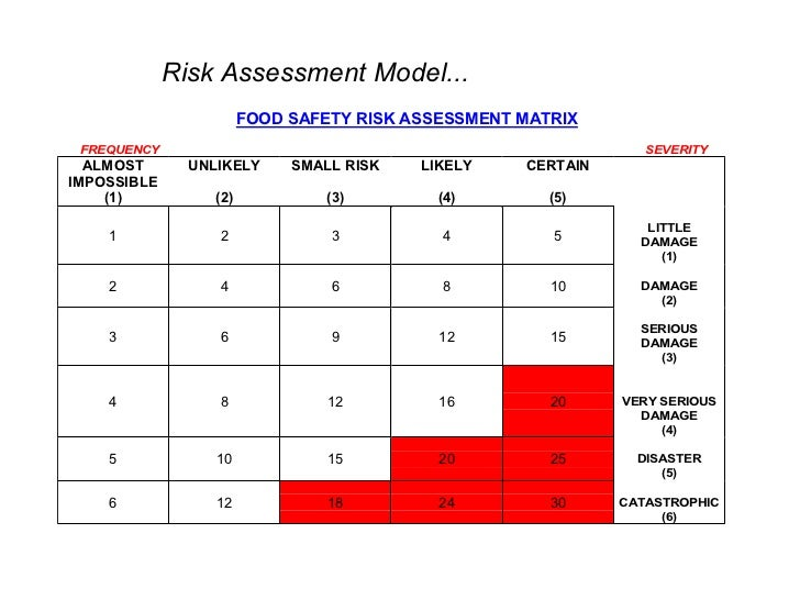food safety risk assessment template - research papers on mathematical modelling report templates