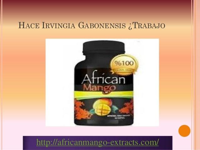 HACE IRVINGIA GABONENSIS ¿TRABAJO    http://africanmango-extracts.com/
