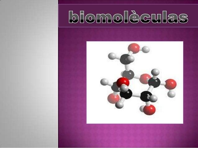 Conjunto de moléculas orgánicas, la mayoría biomoléculas,  compuestas principalmente por:  Carbono  hidrógeno (C,H,O N...