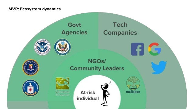MVP: Ecosystem dynamics Focus on community