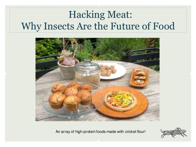 Hacking Meat: Why Insects Are the Future of Food An array of high-protein foods made with cricket flour!