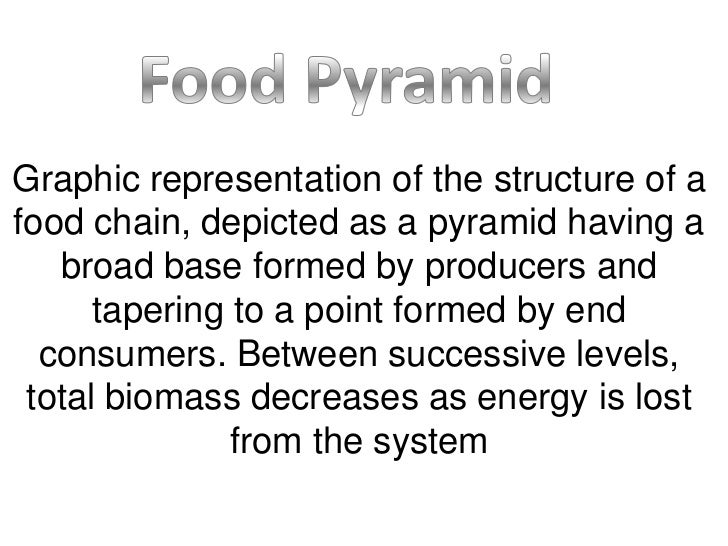 Graphic representation of the structure of afood chain, depicted as a pyramid having a   broad base formed by producers an...