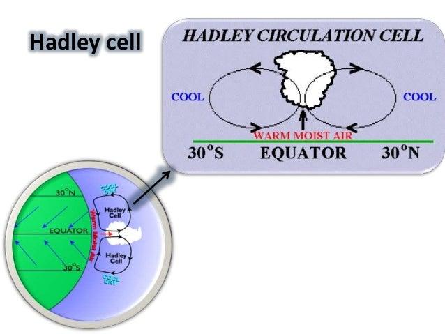 hadley circulation essay