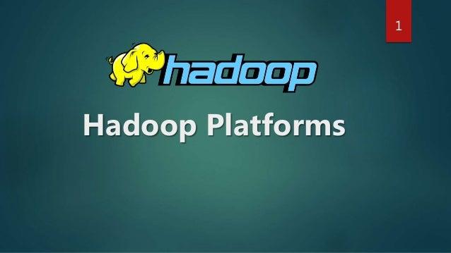 Hadoop Platforms 1
