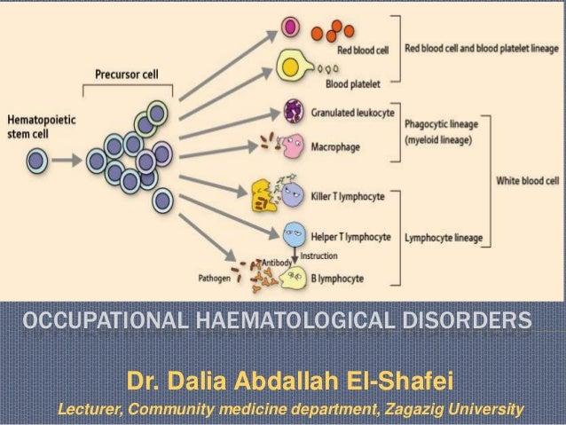 OCCUPATIONAL HAEMATOLOGICAL DISORDERS Dr. Dalia Abdallah El-Shafei Lecturer, Community medicine department, Zagazig Univer...