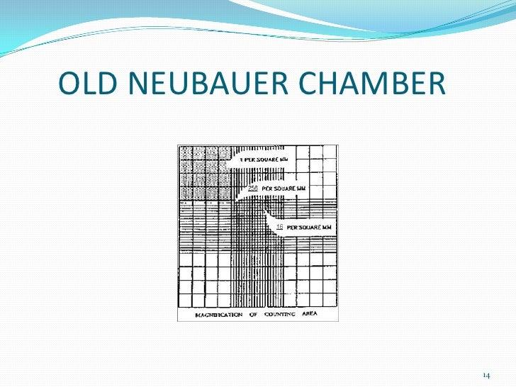 neubauer chamber calculation