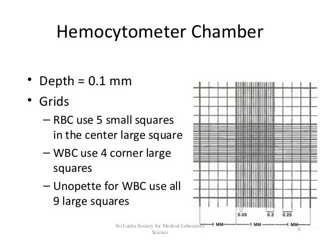 Haemocytometry by Ravi Kumudesh