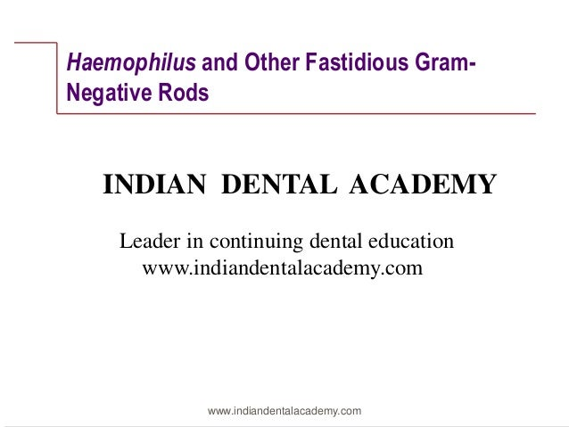 Haemophilus and Other Fastidious GramNegative Rods  INDIAN DENTAL ACADEMY Leader in continuing dental education www.indian...