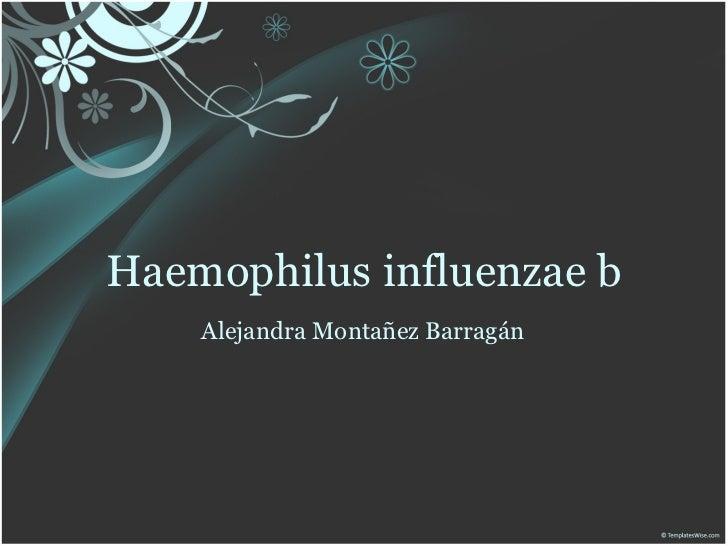 Haemophilus influenzae b Alejandra Monta ñez Barragán