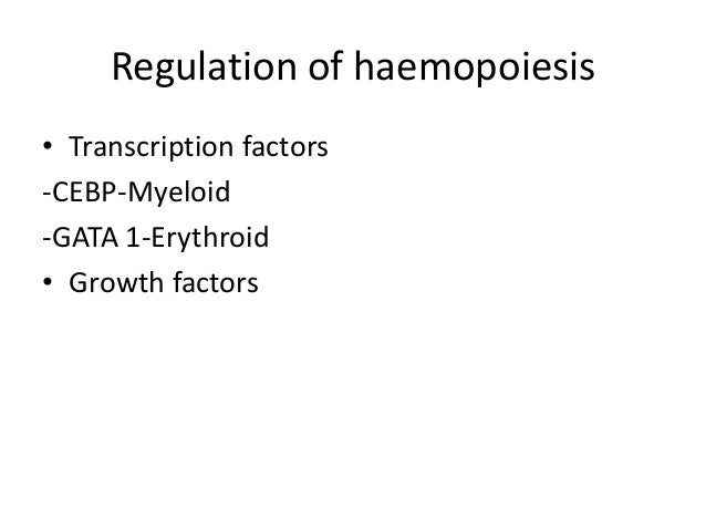 regulation of human haematopoietic stem cell self renewal Hematopoietic stem cells (hscs) • transcriptional regulation • self-renewal • cell cycle a bstract the hematopoietically expressed homeobox transcription factor (hhex) is important for the mat.