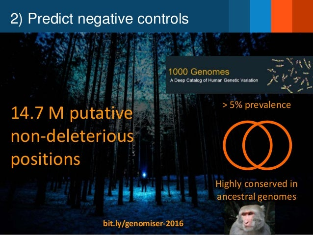 2) Predict negative controls > 5% prevalence 14.7 M putative non-deleterious positions Highly conserved in ancestral genom...