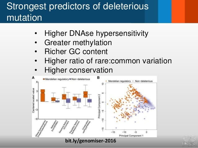 Strongest predictors of deleterious mutation • Higher DNAse hypersensitivity • Greater methylation • Richer GC content • H...