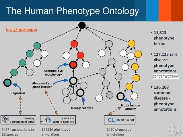 The Human Phenotype Ontology Hyposmia Abnormality of globe location eyeball of camera-type eye sensory perception of smell...