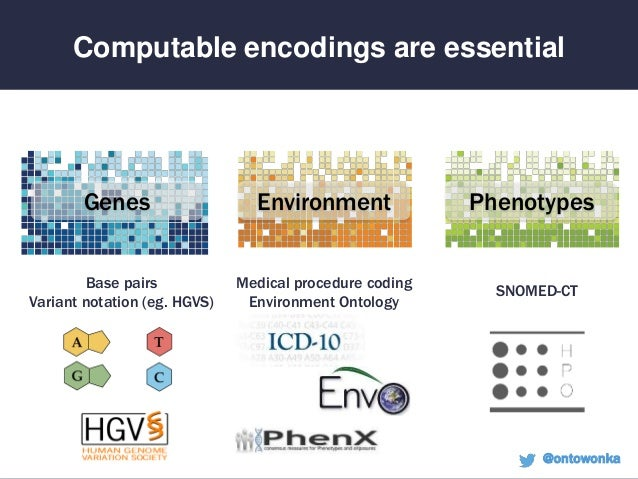 Global Phenotypic Data Sharing Standards to Maximize Diagnostics and Mechanism Discovery Slide 3