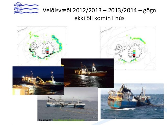 Capelin – catches (Iceland)
